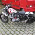 Custom Bikes (4)