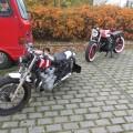 Custom Bikes (5)