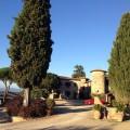 360 Modena im natürlichen Lebensraum