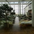 Feldbettlager am Münchener Flughafen