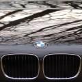 BMW E39 523i Niere