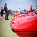 Ferrari 308 Lineup